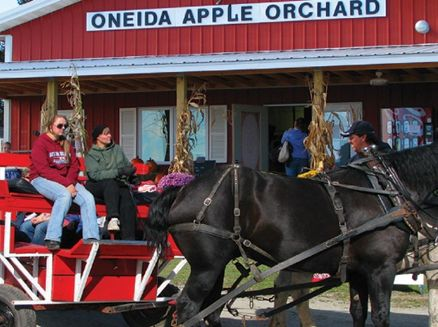 Image for Oneida Nation Apple Orchard